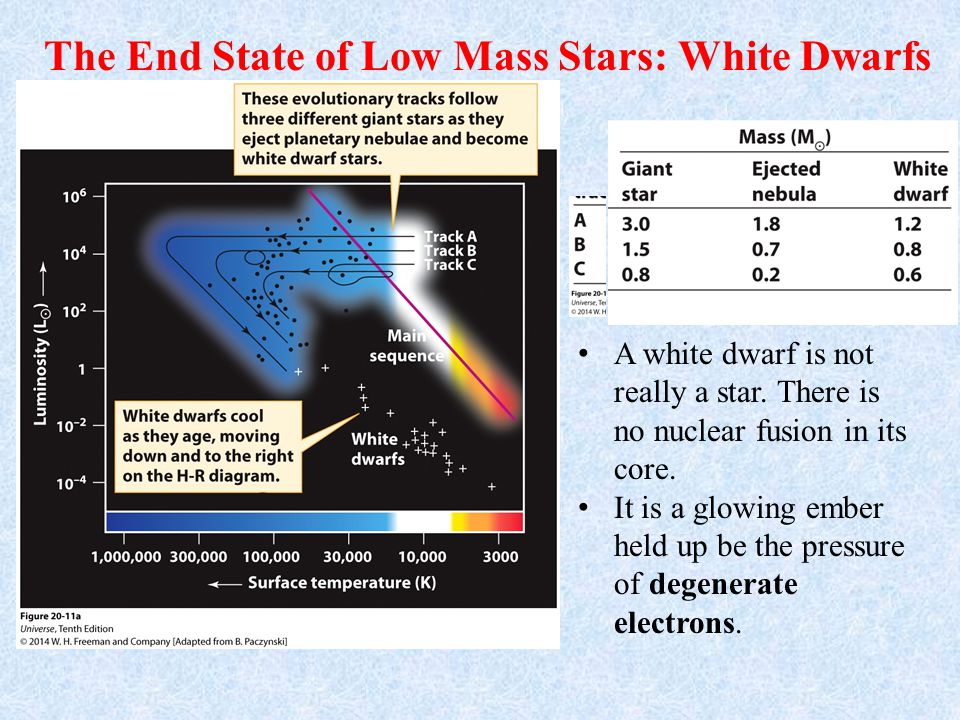 The End State of Low Mass Stars: White Dwarfs A white dwarf is not really a star.