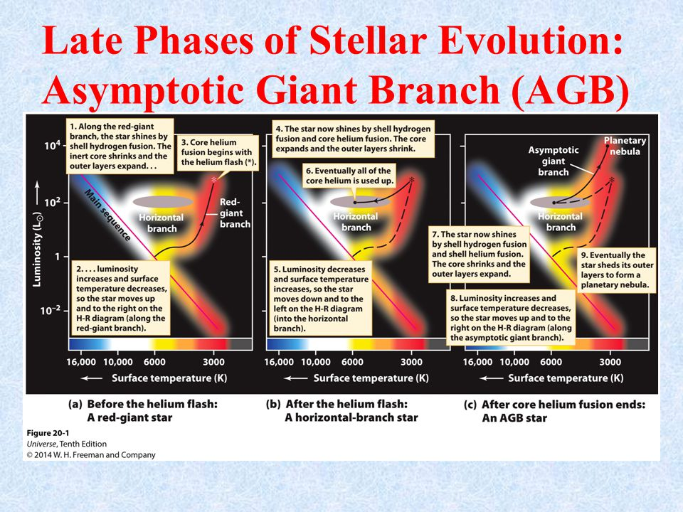 Late Phases of Stellar Evolution: Asymptotic Giant Branch (AGB)