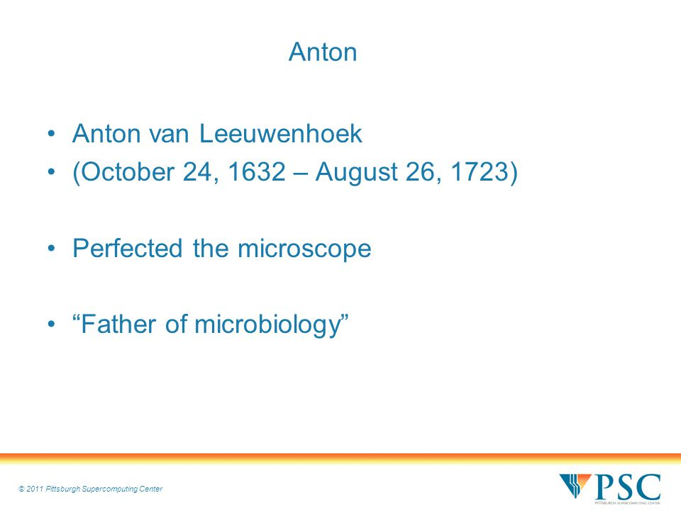 © 2011 Pittsburgh Supercomputing Center Anton Anton van Leeuwenhoek (October 24, 1632 – August 26, 1723) Perfected the microscope Father of microbiology