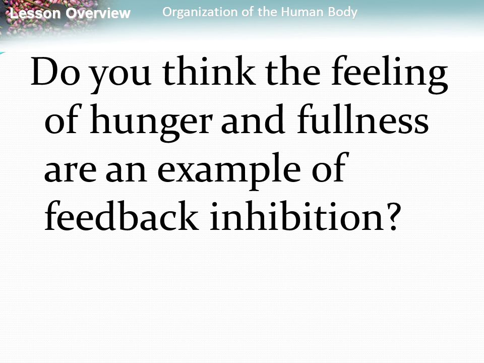 Lesson Overview Lesson Overview Organization of the Human Body Do you think the feeling of hunger and fullness are an example of feedback inhibition?