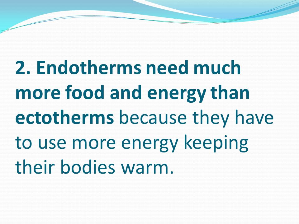 2. Endotherms need much more food and energy than ectotherms because they have to use more energy keeping their bodies warm.