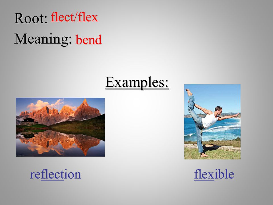 Root:flect/flex Meaning: bend Examples: reflection flexible