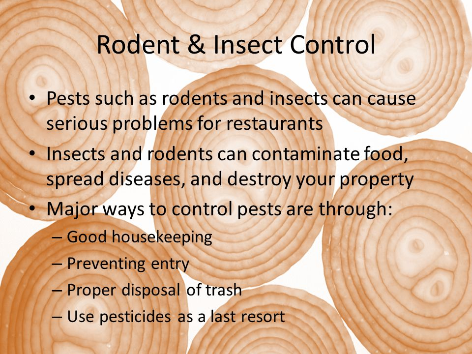 Rodent & Insect Control Pests such as rodents and insects can cause serious problems for restaurants Insects and rodents can contaminate food, spread diseases, and destroy your property Major ways to control pests are through: – Good housekeeping – Preventing entry – Proper disposal of trash – Use pesticides as a last resort
