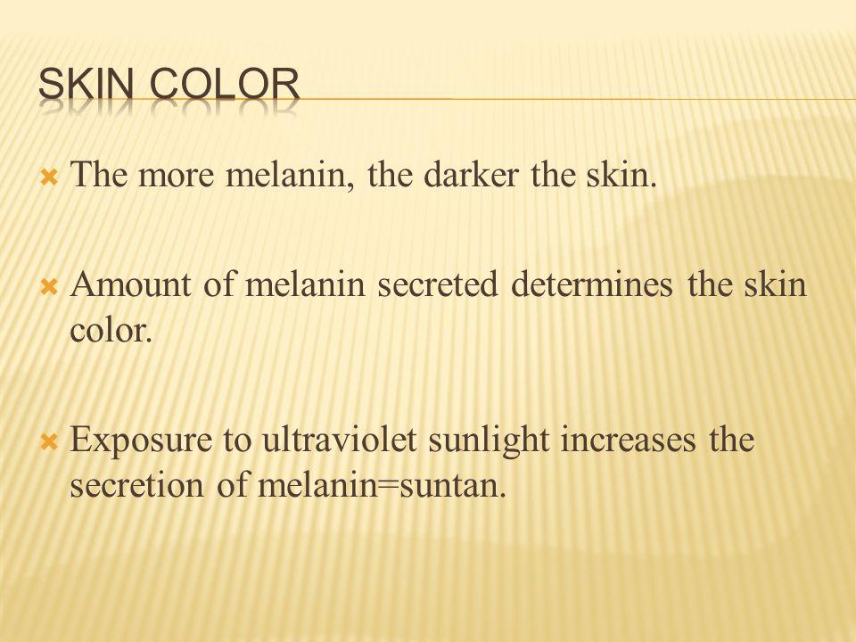  The more melanin, the darker the skin.  Amount of melanin secreted determines the skin color.