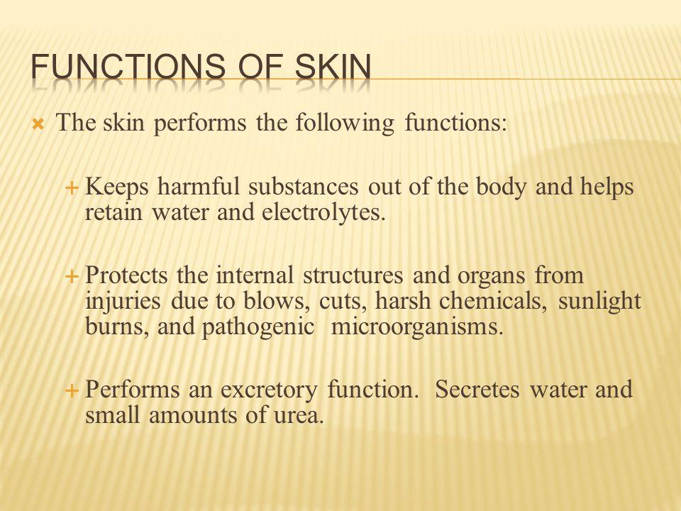  The skin performs the following functions:  Keeps harmful substances out of the body and helps retain water and electrolytes.