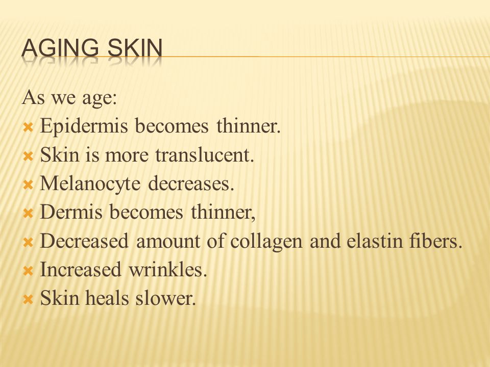 As we age:  Epidermis becomes thinner.  Skin is more translucent.