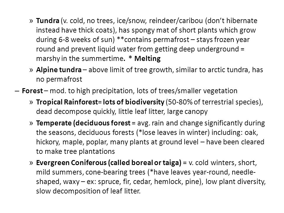 » Tundra (v. cold, no trees, ice/snow, reindeer/caribou (don't hibernate instead have thick coats), has spongy mat of short plants which grow during 6