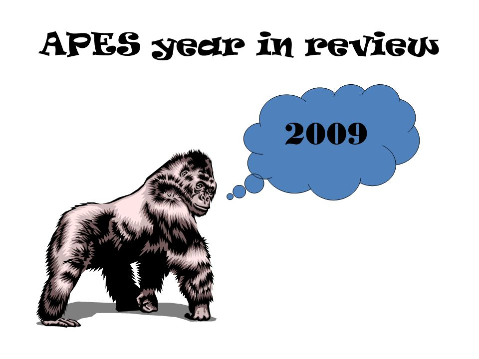 APES year in review 2009