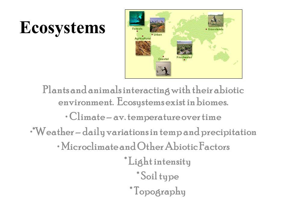 Trophic Relationship Food webs Trophic levels * producers * herbivores *primary carnivores