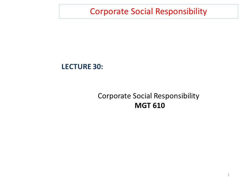 Corporate Social Responsibility LECTURE 30: Corporate Social Responsibility MGT 610 1