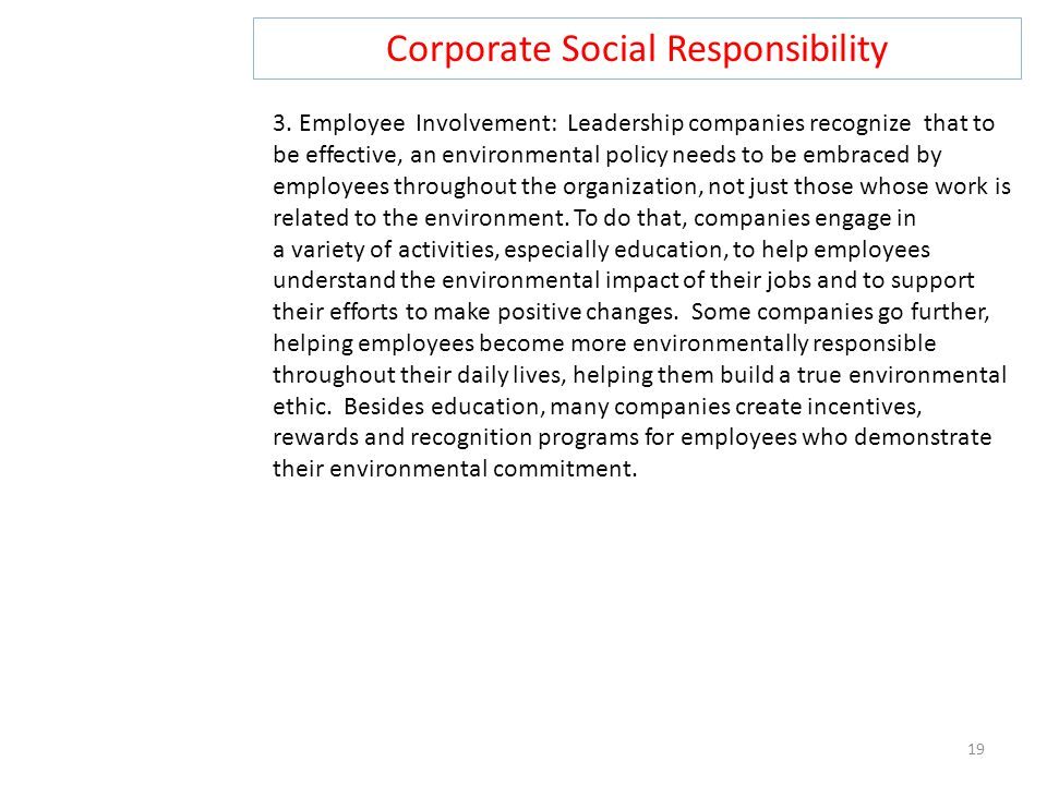 Corporate Social Responsibility 19 3.