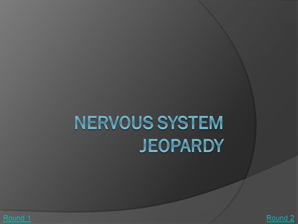 NeuronsElectrical States of Neurons Types of Nervous Systems Sensory Receptors Control of Functions in the Brain Other Components of the Nervous System 100 200 300 400 500 Final Jeopardy Round 1 Round 2 Round 1