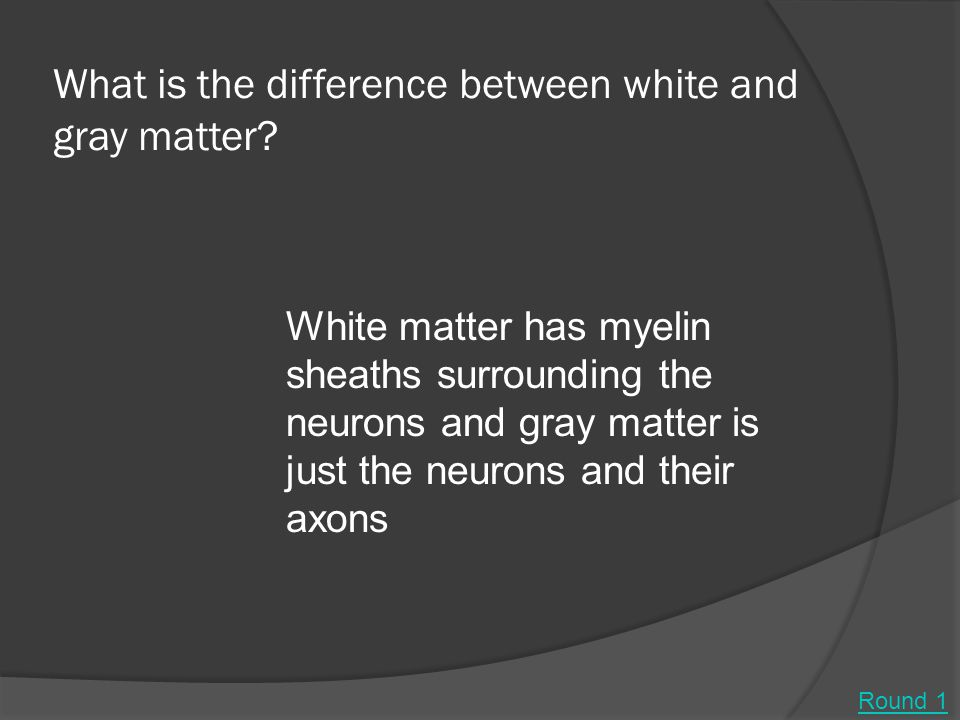 What is the difference between white and gray matter.
