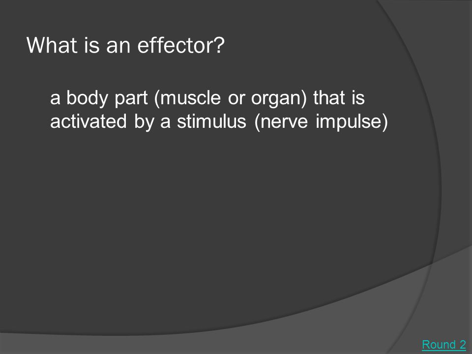 What is an effector.