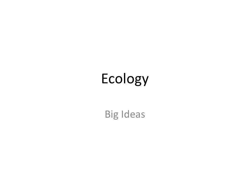 Ecology Big Ideas