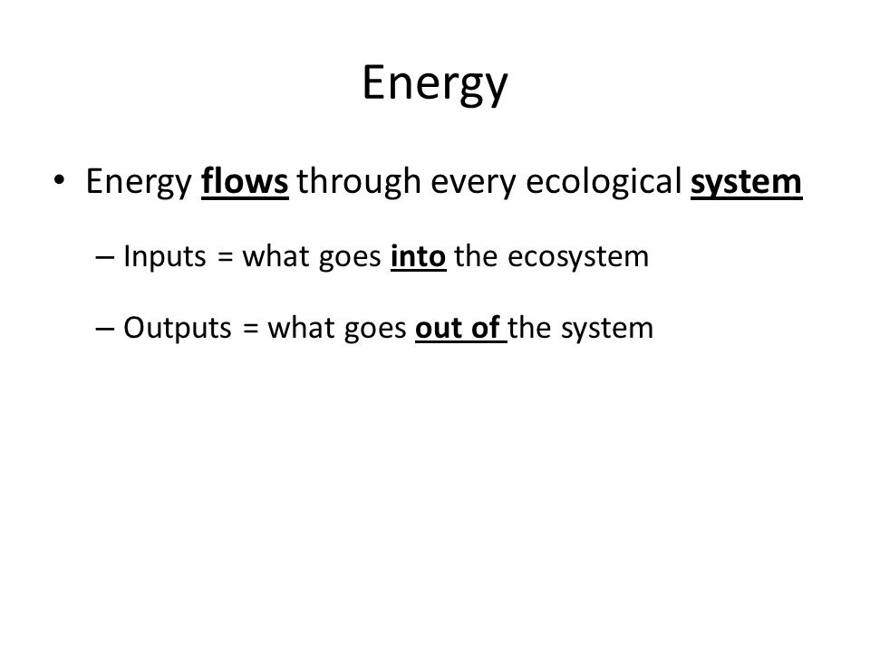Energy Energy flows through every ecological system – Inputs = what goes into the ecosystem – Outputs = what goes out of the system