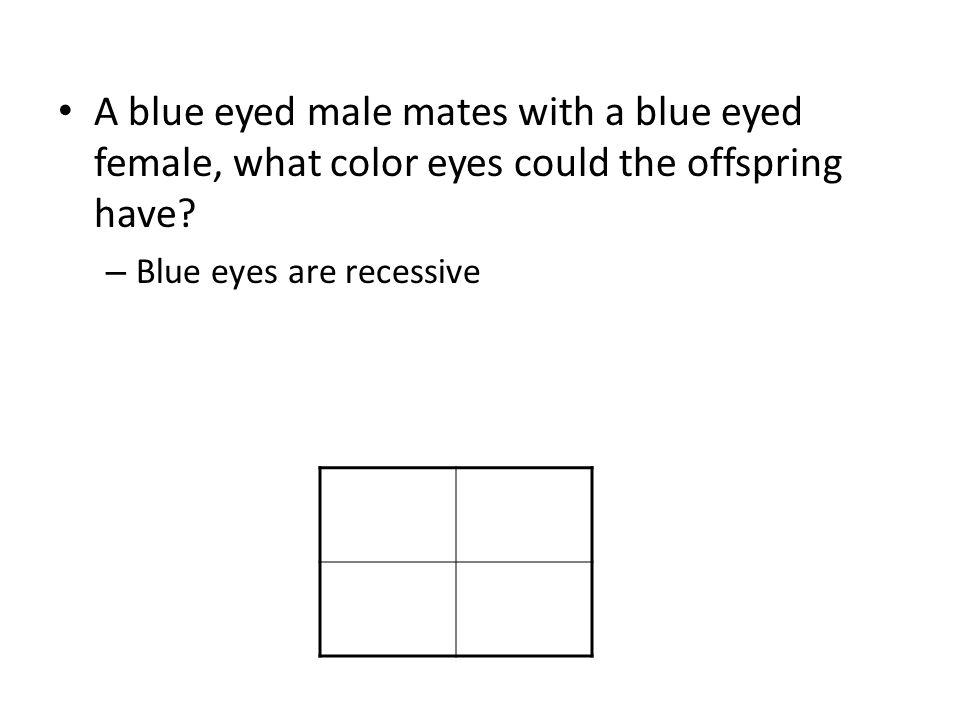 A blue eyed male mates with a blue eyed female, what color eyes could the offspring have.