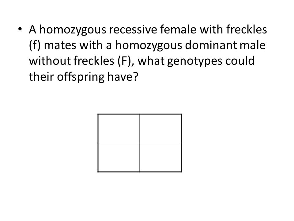 A homozygous recessive female with freckles (f) mates with a homozygous dominant male without freckles (F), what genotypes could their offspring have