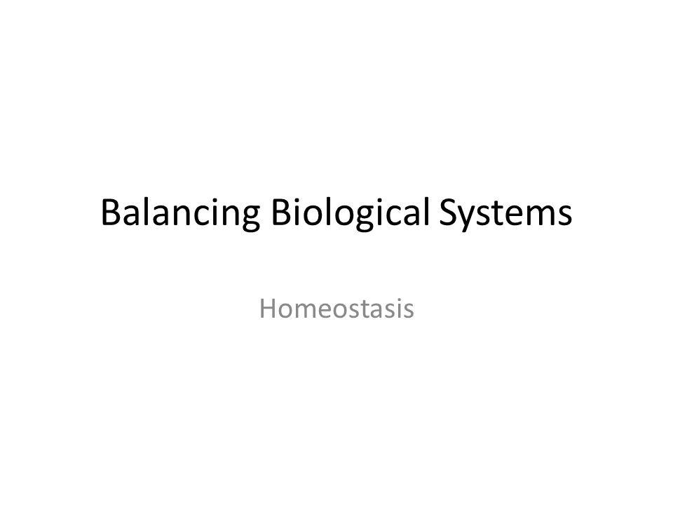 Balancing Biological Systems Homeostasis