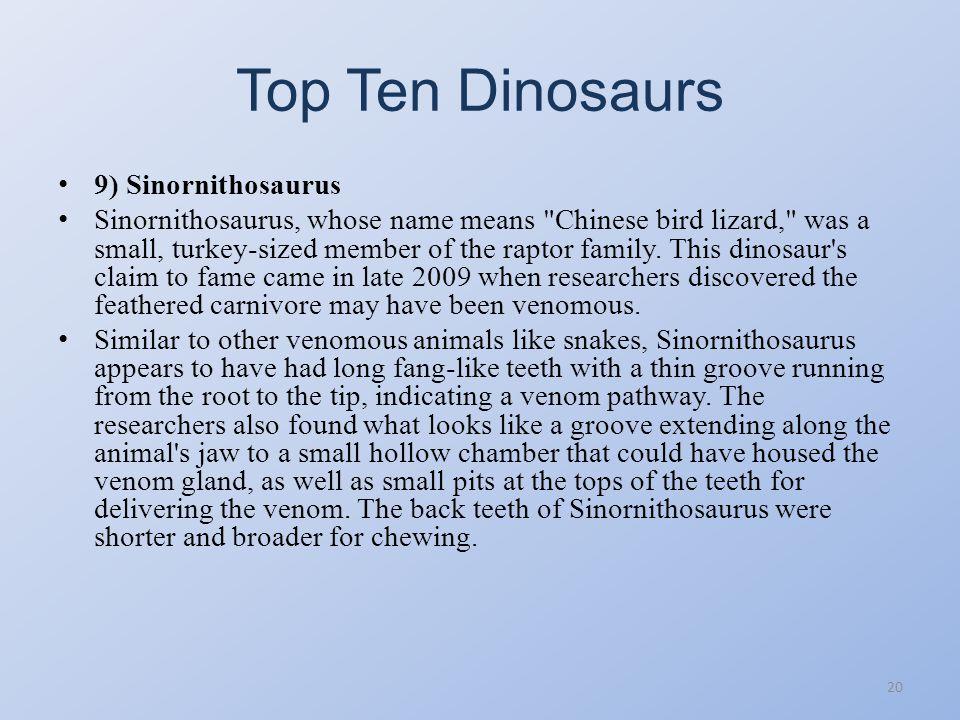 Top Ten Dinosaurs 19