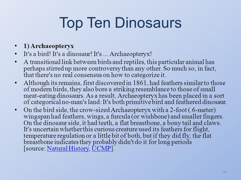 Top Ten Dinosaurs 35