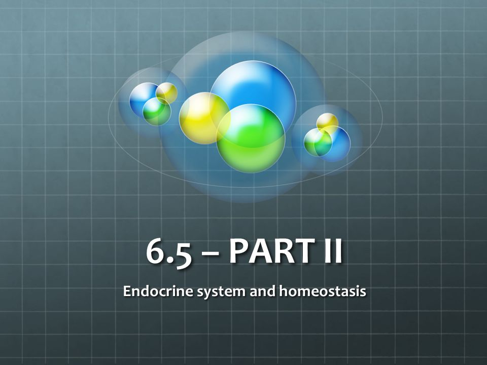 6.5 – PART II Endocrine system and homeostasis