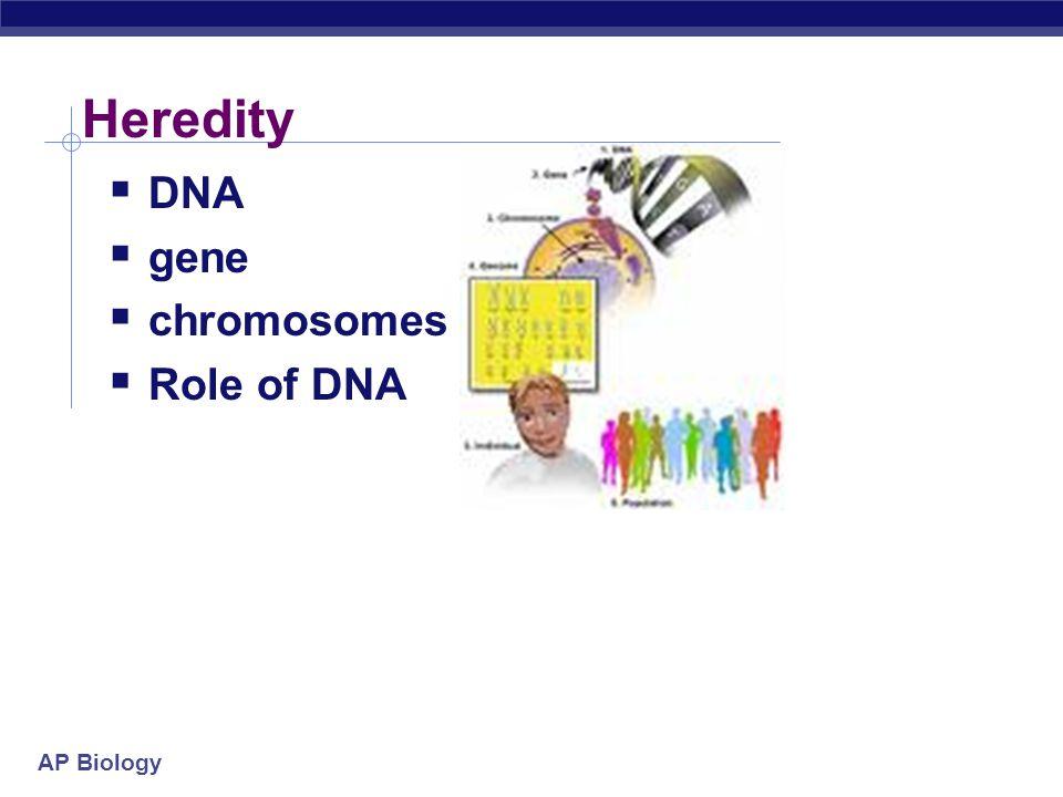 AP Biology Heredity