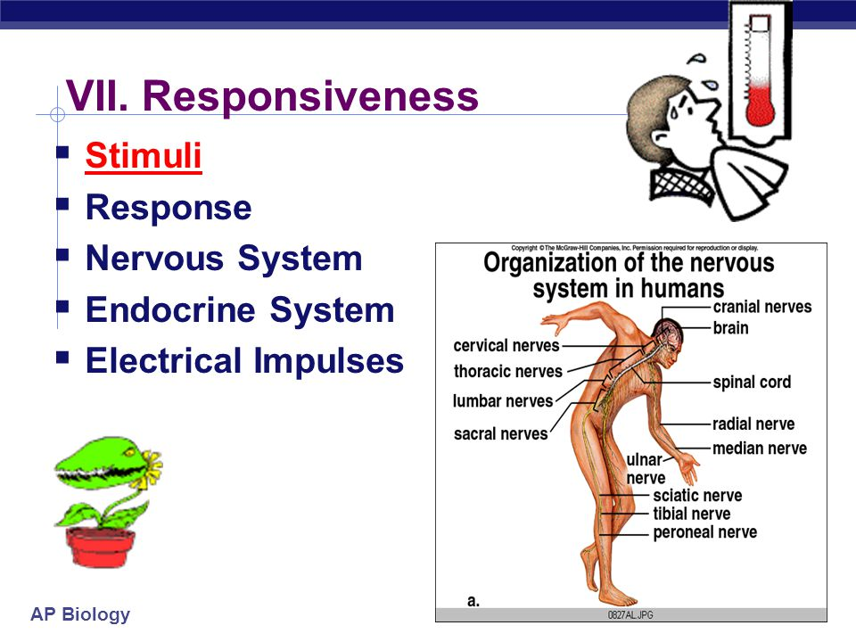 AP Biology Organisms are open systems that interact continuously with their environments  Organisms interact with their environment, which includes o