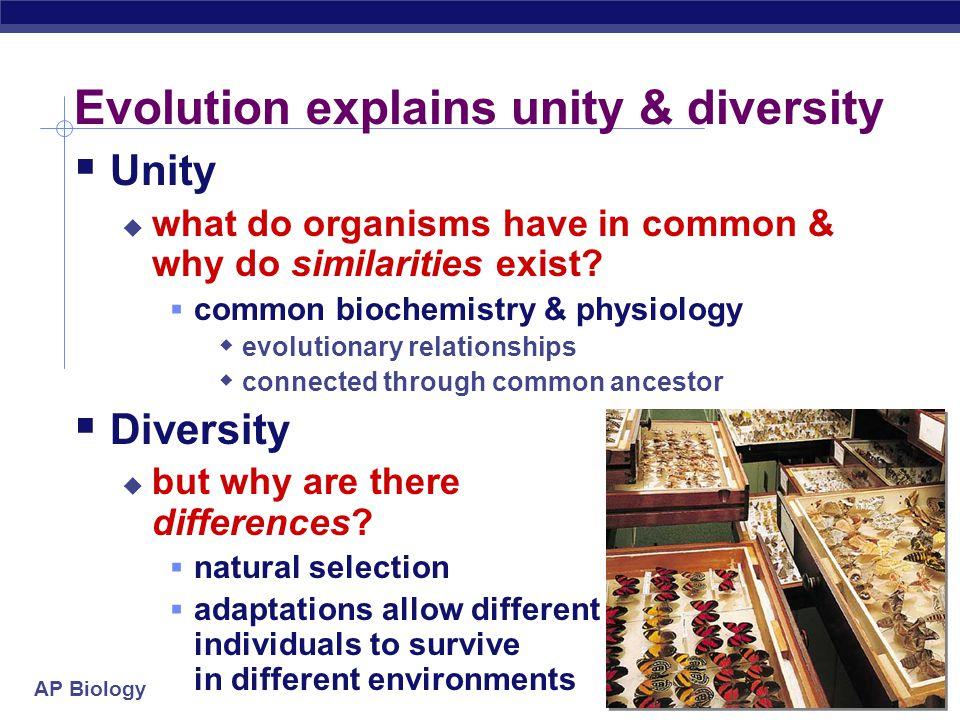 AP Biology IX. Evolution  Core theme of biology Charles Darwin
