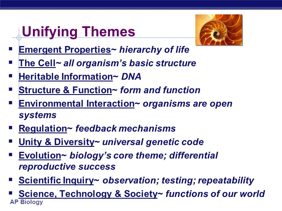 Why study themes of Biology?  Biology is an ever expanding body of knowledge  too much to memorize it all  need to generalize  create a framework