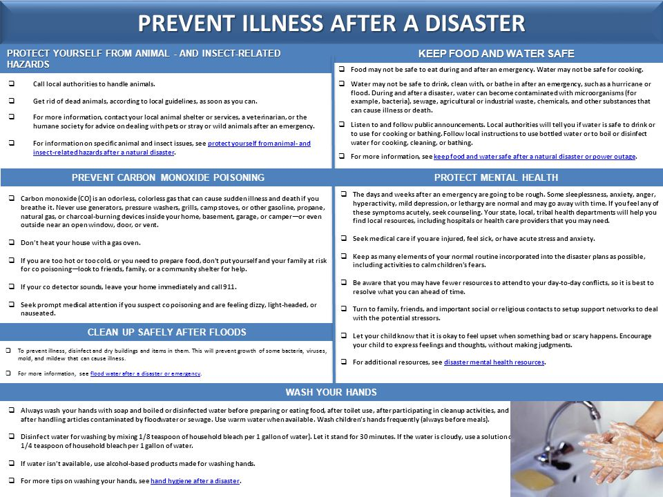 PREVENT ILLNESS AFTER A DISASTER  Avoid wild or stray animals and biting or stinging insects.