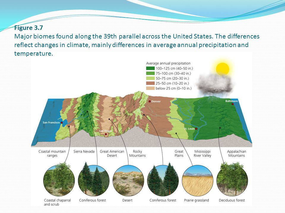 Figure 3.7 Major biomes found along the 39th parallel across the United States. The differences reflect changes in climate, mainly differences in aver