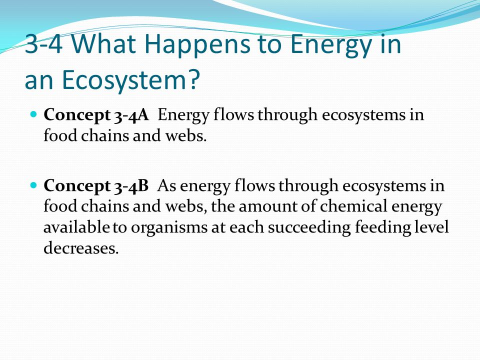3-4 What Happens to Energy in an Ecosystem? Concept 3-4A Energy flows through ecosystems in food chains and webs. Concept 3-4B As energy flows through
