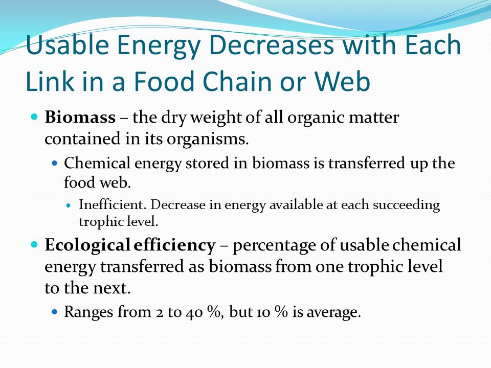 Usable Energy Decreases with Each Link in a Food Chain or Web Biomass – the dry weight of all organic matter contained in its organisms. Chemical ener