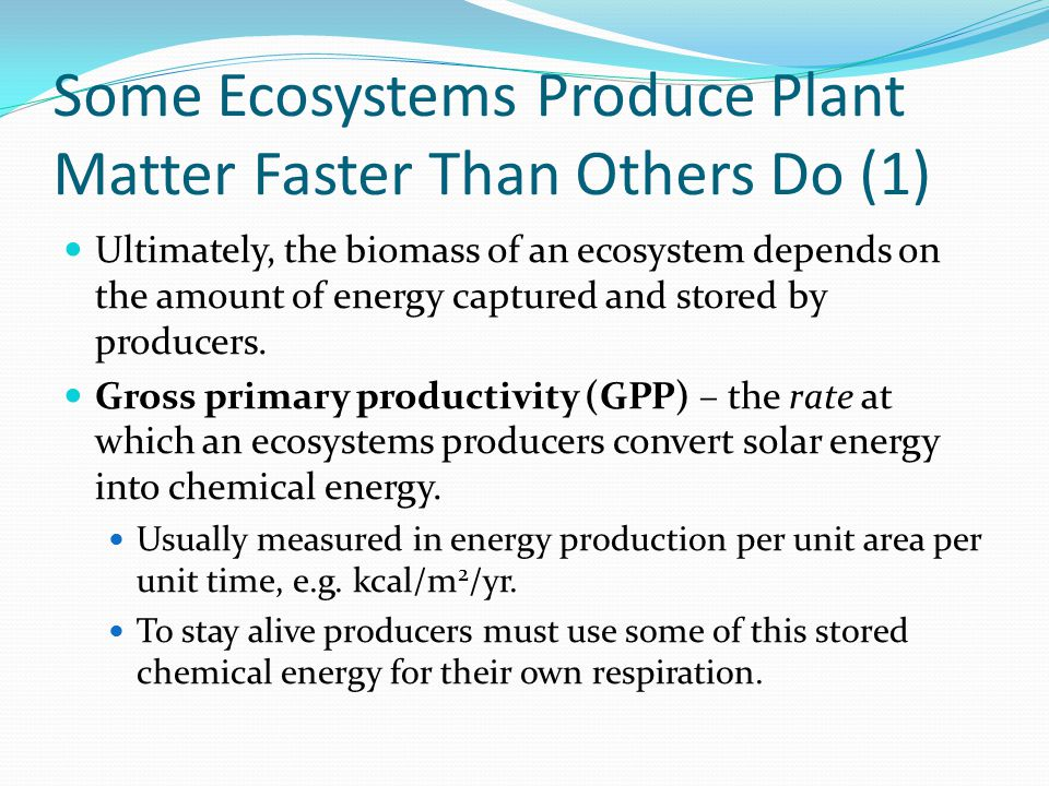 Some Ecosystems Produce Plant Matter Faster Than Others Do (1) Ultimately, the biomass of an ecosystem depends on the amount of energy captured and st