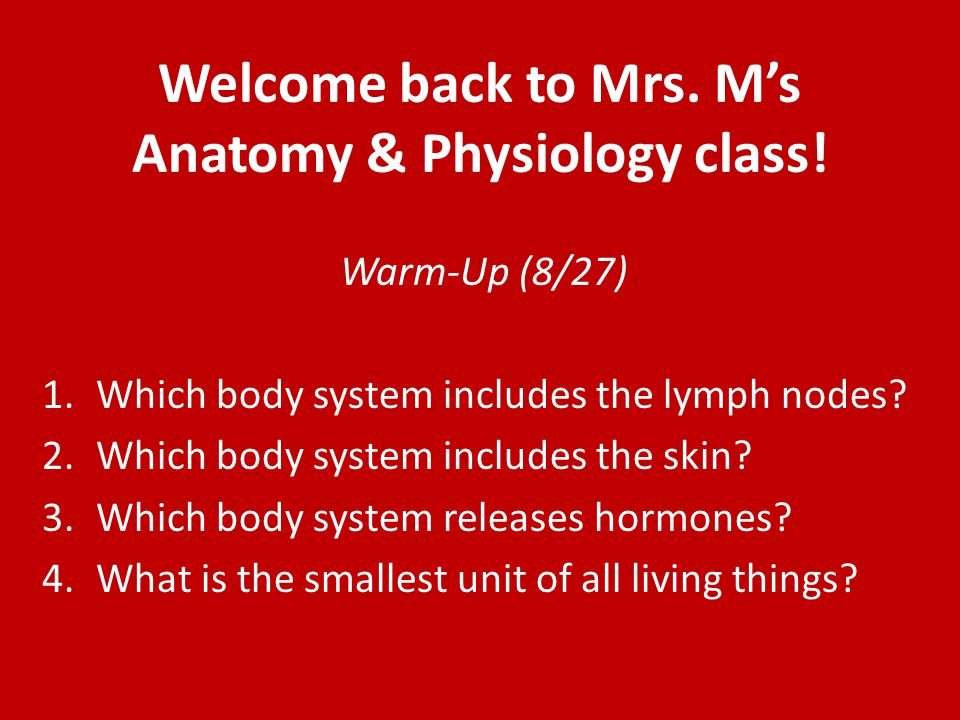 Warm-up: 8/27 1.Complete the following blanks: Atoms → Molecules → Cells → Tissue → _______→ Organ System → _________ 2.What is the difference between Anatomy and Physiology.