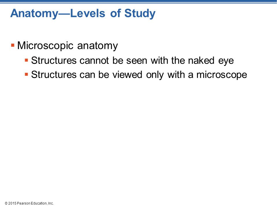 © 2015 Pearson Education, Inc. Anatomy—Levels of Study  Microscopic anatomy  Structures cannot be seen with the naked eye  Structures can be viewed