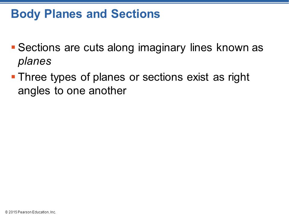 © 2015 Pearson Education, Inc. Body Planes and Sections  Sections are cuts along imaginary lines known as planes  Three types of planes or sections