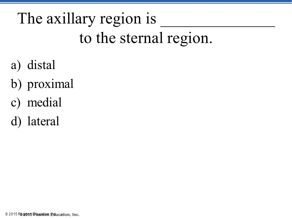 © 2015 Pearson Education, Inc. The axillary region is ______________ to the sternal region. a)distal b)proximal c)medial d)lateral