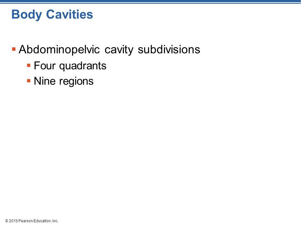 © 2015 Pearson Education, Inc. Body Cavities  Abdominopelvic cavity subdivisions  Four quadrants  Nine regions