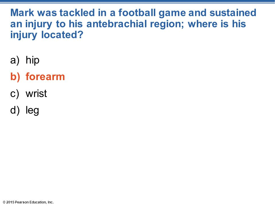 © 2015 Pearson Education, Inc. Mark was tackled in a football game and sustained an injury to his antebrachial region; where is his injury located? a)