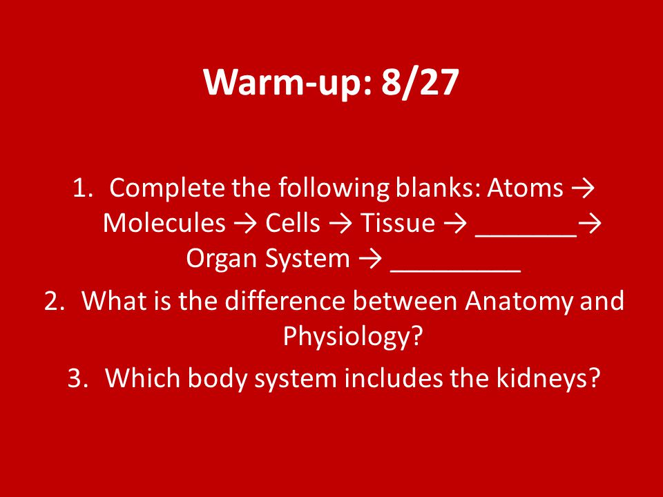© 2015 Pearson Education, Inc.Which of the following activities represents an anatomical study.