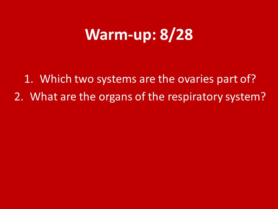 Warm-up: 9/2 1.The head is _____________ to the abdomen.