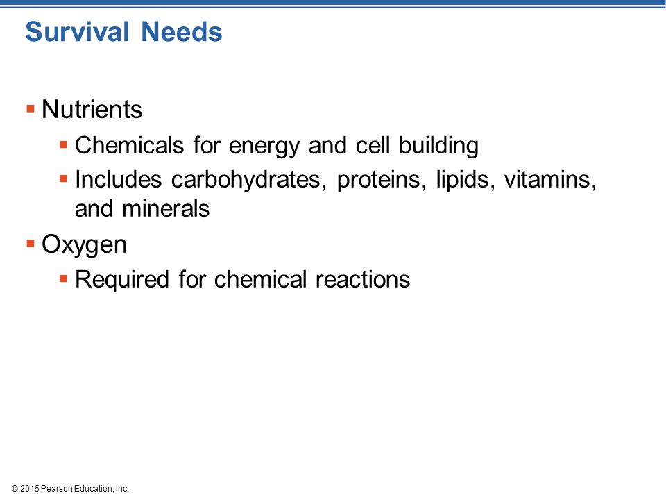 © 2015 Pearson Education, Inc. Survival Needs  Nutrients  Chemicals for energy and cell building  Includes carbohydrates, proteins, lipids, vitamin