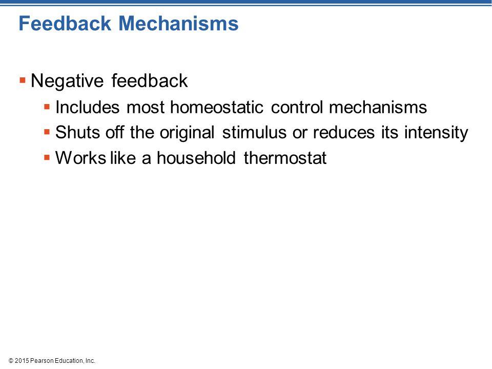 © 2015 Pearson Education, Inc. Feedback Mechanisms  Negative feedback  Includes most homeostatic control mechanisms  Shuts off the original stimulu