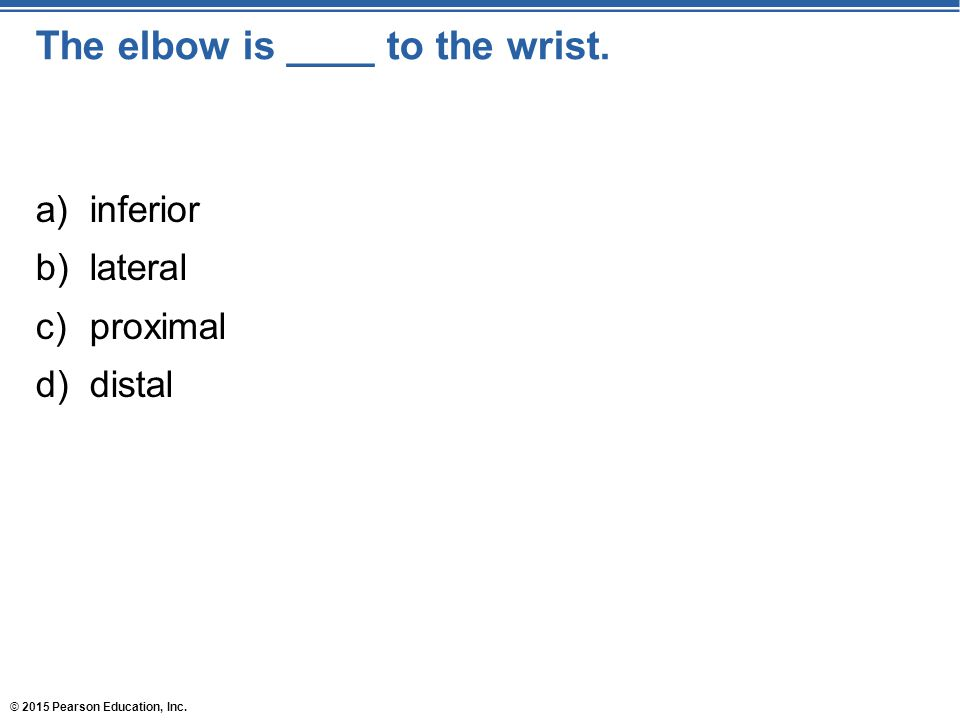 © 2015 Pearson Education, Inc. The elbow is ____ to the wrist. a)inferior b)lateral c)proximal d)distal