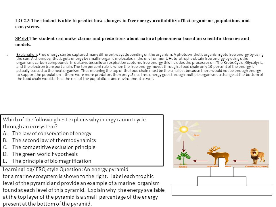 LO 2.3 The student is able to predict how changes in free energy availability affect organisms, populations and ecosystems. SP 6.4 The student can mak