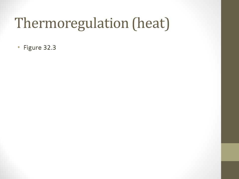 Thermoregulation (heat) Figure 32.3