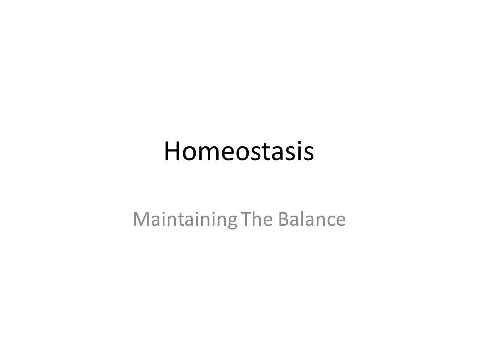 Homeostasis Maintaining The Balance
