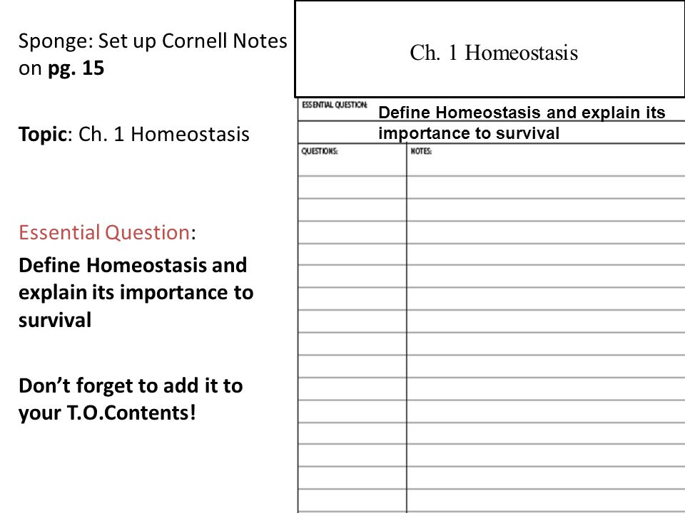 Sponge: Set up Cornell Notes on pg.17 Topic: Ch.